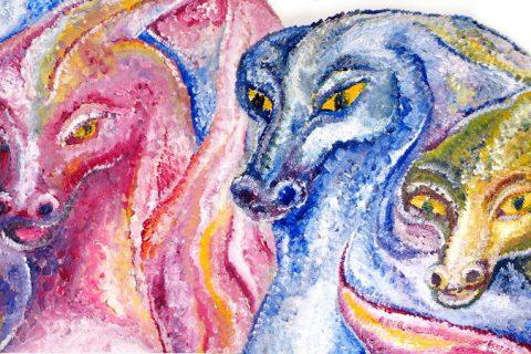 Haustier trotz chronischer Erkrankung - drei Drachen